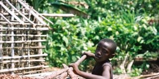 Chocolate Companies Profiting From Misery