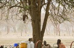 Abyei refugees