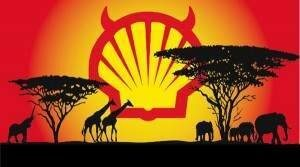 Shell Nigeria Delta Pollution