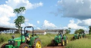 Africa Agribusiness Sector