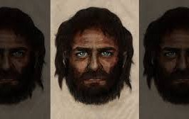Light Skin Genes Evolved More Recently Than Previously Thought - DNA Study