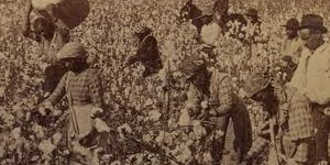 Slavery and Capitalism (2)