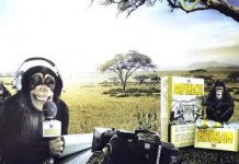 South Korea Pulls Cigarette Ad Depicting Africans As Monkeys