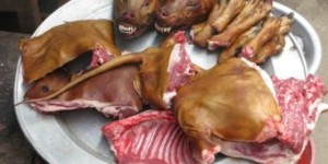 Chinese Dog Meat Festival (2)