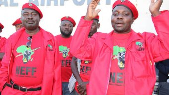 Malema's EFF Spreads Across Southern Africa