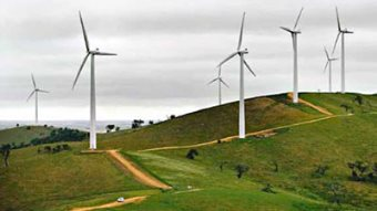 South Africa Launches One Of Africa's Largest Wind Farms