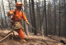 California Using Thousands Of Prison Slaves As Firefighters