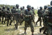 Our Fighting Spirit Has Returned - Nigerian Army