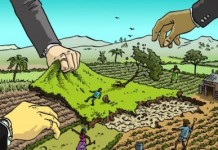 Millions Of Hectares Of Land In Africa 'Grabbed'