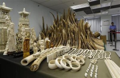 Ivory Smuggled On China State Trip: Report