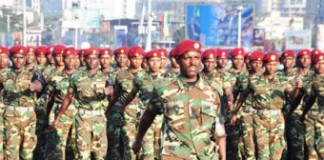 Ethiopia Cautious About Establishing Buffer Zone In Somalia