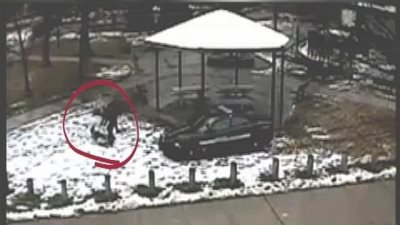 Video Shows Cops Roughing Up Tamir Rice's 14-Year-Old Sister As Her Brother Lay Dying
