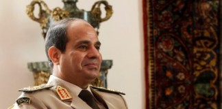 Egypt Ready To Re-Engage With Africa To Protect Its Interests