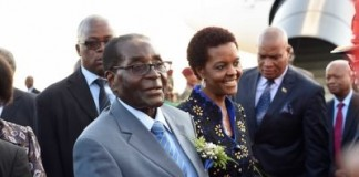 The Big Mugabe Idea Whose Time Has Come