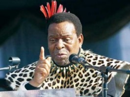 Worthless Zulu King Likens African Immigrants To Lice, Ants