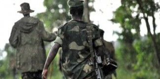 Dozens Of DR Congo Pygmies Killed In Escalating Violence