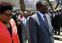 Zimbabwe: Western Donors Pressure Opposition To Join Forces Against Mugabe