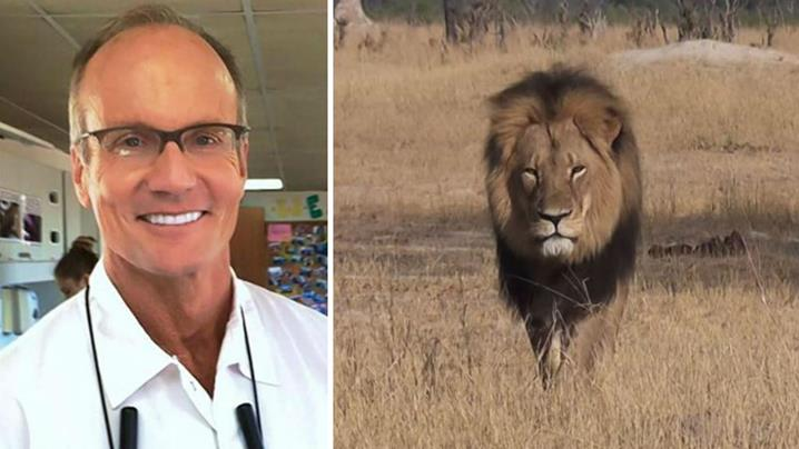 "American Poacher ""Should Be Extradited"" For Killing Iconic Lion"