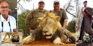 Zimbabwe Issues Arrest Warrant For American Poacher Who Murdered And Decapitated Cecil The Lion