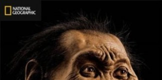 """Homo Naledi"" An Attempt To Link Black People To Baboons?"