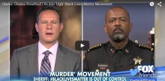 """War On Cops"" Debunked: Police Killings At Lowest Level In Decades"