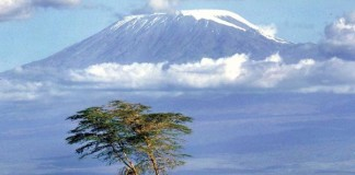 10 Amazing Facts About Tanzania