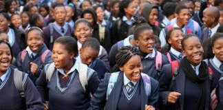 South Africa: Principal Calls Students 'Monkeys With Shack Mentality'