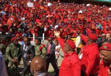 South Africa: Julius Malema Vows To Reclaim African Land From White Settlers