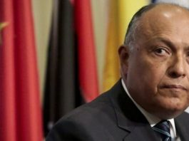 """Egypt Launches Inquiry After Its Diplomat Called Africans """"Slaves And Dogs"""""""