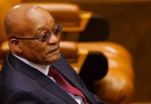 Jacob Zuma Wounded In No-Confidence Vote After Parliamentary Ruckus