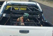 Pregnant S. African Woman Is Forced To Ride In Animal Cage By White Farmer