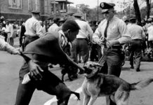 The Good Old Days Of White Supremacy Is Today - The Gantt Report