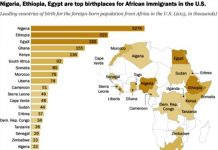 Number Of African Immigrants In The US Growing Steadily
