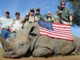 American Hunters Auction The Lives Of African Animals To Raise Funds To Lobby Trump