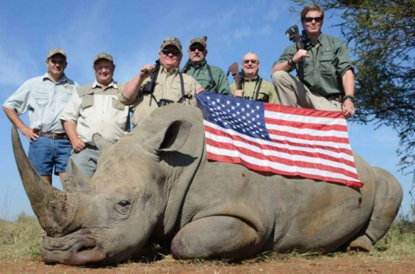 American Hunters Auction The Lives Of African Animals To Raise Funds Lobby Trump