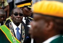 Zimbabwe To American Critics: 'Go And Hang On A Banana Tree'