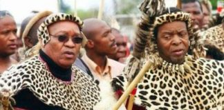 Zuma Government Behind Anti-African Protests In South Africa?