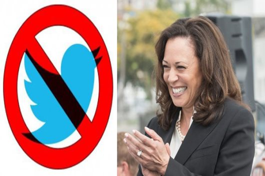 Twitter Suspends Accounts Critical Of Kamala Harris