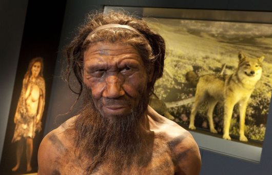 Modern Humans Vs. Neanderthals