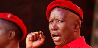 The African Union Is Close To Being Useless Says Malema