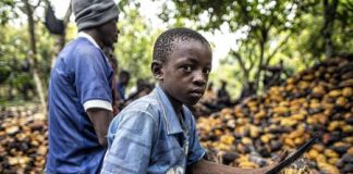 Ghana And Ivory Coast Demand Fair Price, Suspend Cocoa Exports