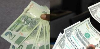 Zimbabwe Outlaws Use Of The US Dollar