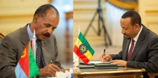 AFRICANGLOBE - On the first anniversary of the historic Ethiopia – Eritrea peace deal, the two neighbours are working to actualize the pillars of the deal signed in Asmara last year.