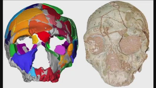 Ancient Skull Discovered In Greece Puts A Twist On Early African Migration